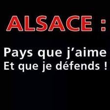 Vign_alsace_20